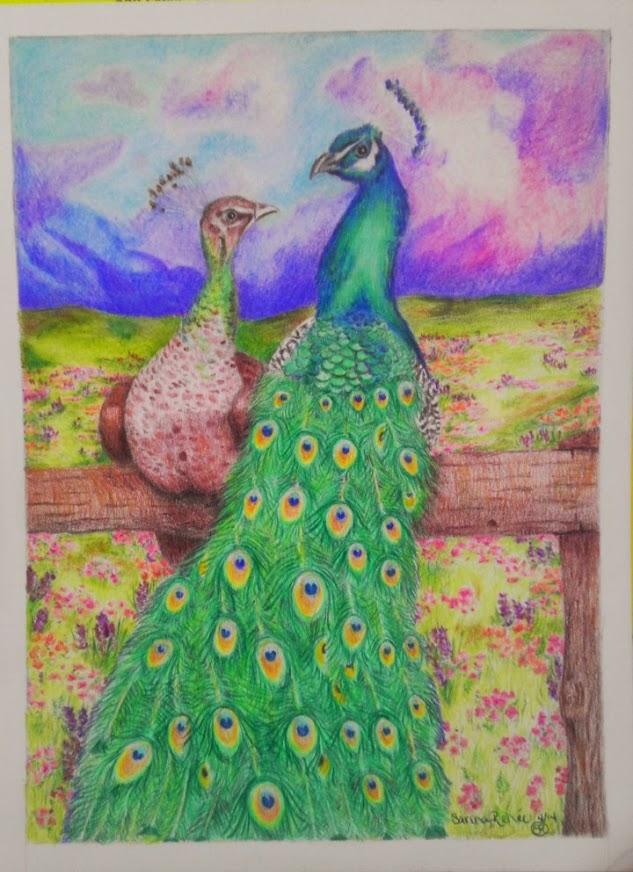 Peafowl field